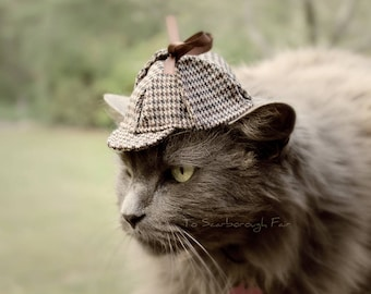 Sherlock Holmes chat chapeau - chapeau de chat Deerstalker