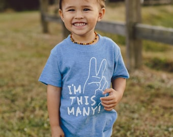 Im This Many- Im Two 2nd Birthday Shirt Boy 2nd Birthday Shirt Second Birthday Shirt Second Birthday Shirt Boy Im 2