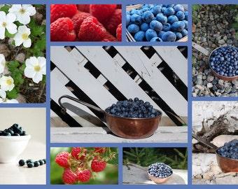 Raspberry Blueberry  Jam pint 16 oz  Farmers Market Brunch Mixed Berry