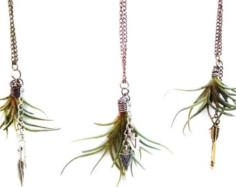 Living Air Plant (Tillandsia) Necklaces with Charms, Crystals or Beads- Funky/ Unique/ Custom Jewelry