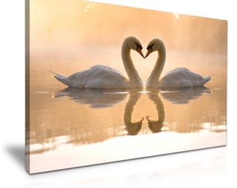 Swans Love Heart Canvas Print 76 cm x 50 cm