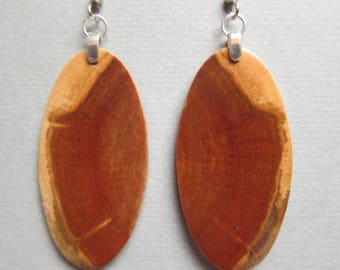 Unique Exotic Wood Earrings Norfolk Island Pine repurposed ecofriendly Handcrafted ExoticWoodJewelryAnd