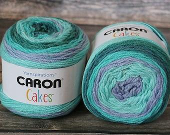 Caron Cakes Yarn - Blueberry Shortcake - Wool Blend Yarn - Self-striping yarn - Michael's exclusive yarn - Skein of Caron Cake Yarn