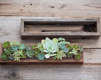 "4""x18"" Succulent Planter Box"