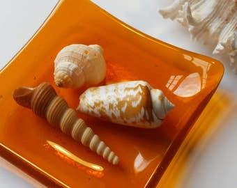 Tangerine Orange Glass Dish - Spoon Rest - Trinket Dish - Jewelry Dish