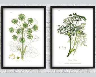 Green plants print leaves print flowers print botanical illustration SET of 2 wall art print