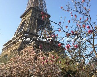 Eiffel Tower Nature Photograph