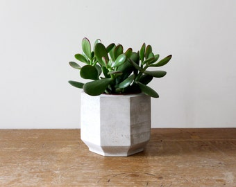 Large Octagonal Concrete Planter perfect for a Cactus or Succulent Plant // Concrete Plant Pot- Handmade
