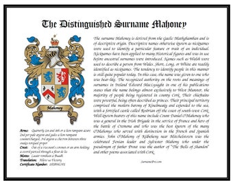 LS coat of arms family crest design last name origin surname meaning name history and heraldry plus geneology custom print and last name.
