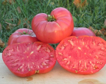 Watermelon Tomato Seeds- Organic-  Huge Beefsteak Variety-   30+ Seeds