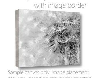 B&W Wall Canvas-Dandelion Photography-Fine Art Gallery Wrap Canvas-Horizontal Wall Art-Abstract Image-Wildflower-8x10/11x14/16x20/20x30