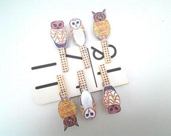 Clothespins, decorated, photo display, art display, No. American owls