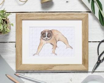 Slow loris - loris print - animal art print - wildlife art - slow loris illustration - watercolour print - small print - nursery art