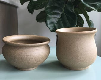 Rare Succulent-Medium Clay Planters with Drainage Hole