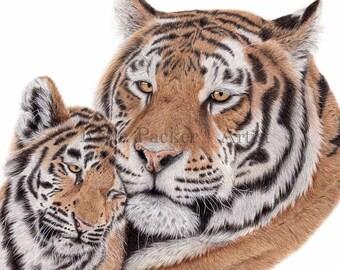 True love, Tiger and Cub Fine Art Print