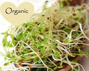 Organic Non-GMO Alfalfa Sprouting Seeds, Organic  Sprouting seeds, Organic seeds, Organic Sprouts, Alfalfa Seeds, Alfalfa Sprouts Vegetable