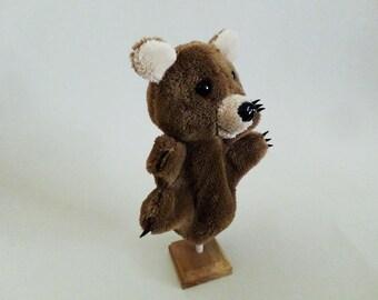 Brumi, the bear