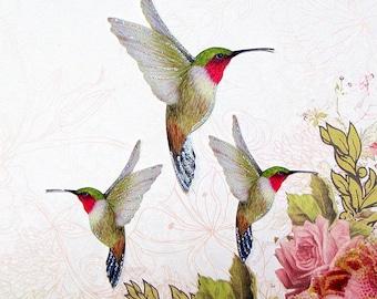 Hummingbird Embellishments Zephyr