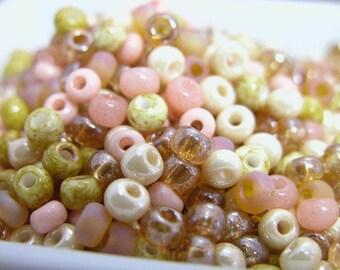 Sahara Sands  Czech Glass seed bead mix size 6 pink tan golden brown