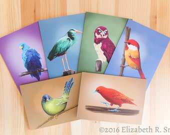 Fantasy Bird Drawing Blank Notecard Set of Six