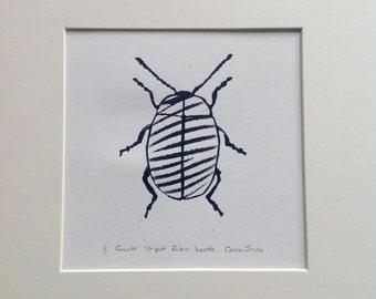 Greater striped zebra print beetle.