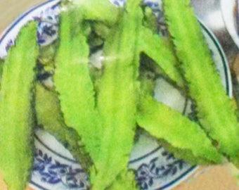 Winged Goa Bean 15 Seeds Thai Vegetable Plant Psophocarpus tetragonolobus