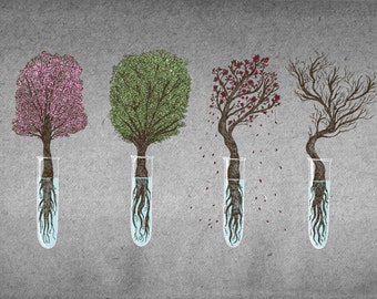 A Bonsai For All Seasons- A4 nature science art print by Jon Turner- FREE WORLDWIDE SHIPPING