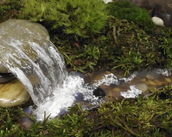 Add a Miniature Waterfall, Pond or River to your Fairy Garden Terrarium - Unique Terrarium Accessory - Handmade by Gypsy Raku