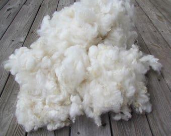 Romney Locks natural ivory wool fleece 2 oz