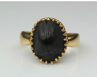 Layaway For Cat Payment 2 Of 4 *** Scarab Ring