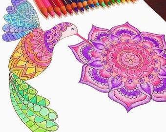 Humming Bird Coloring Page download, Mandala coloring page, Flower coloring page, Kids coloring page download, Adult coloring page