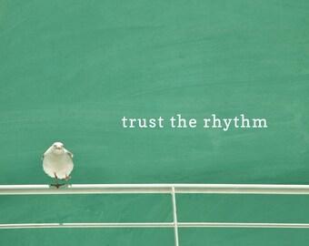 Trust The Rhythm motivational poster, seagull photo print, typography word art, summer, beach decor