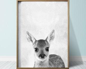 Fawn Print Baby Deer print Nursery decor Posters Wall Art Print Animal Print