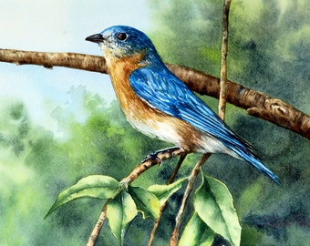 Blue Bird. Original Watercolor on Paper, 12 x 9. Free Shipping.