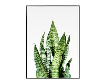 Green and Yellow Leaves Poster - Botanical - Green - Print