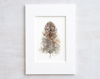 Small Owl Feather Print, Nature Watercolor Painting