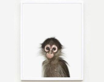 Baby Animal Nursery Art Print. Baby Monkey Little Darling. Safari Animal Print. Animal Wall Art. Animal Nursery Decor. Baby Animal Photo.