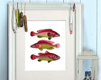 Fish art print - Red/Yellow Fantasy Fish - fish print fishing gift fishermans gift fish wall art fish Gifts for Men birthday gift for dad