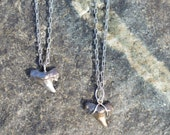 Shark Tooth Necklace...