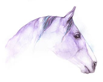 lila Pferd, Pferde Kunst, Pferdesport, Original Aquarell Malerei
