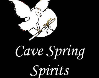 Cave Spring Spirits, from the album I Walk in Peace, Native American Flute Music