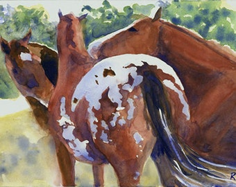 Appaloosa Quarter Thoroughbred Horse  Art PRINT of my Watercolor Painting