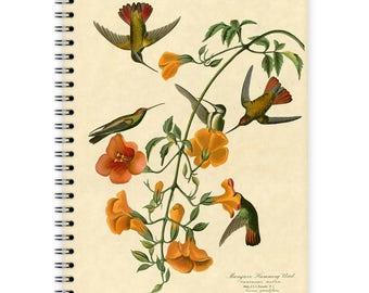 Notebook A5 - Hummingbirds
