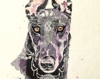 Anubis Greyhound Watercolour