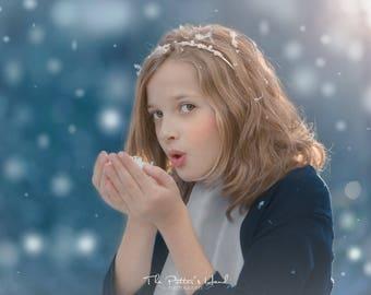 Lightroom Winter Wonderland Brushes and Soft Snow Presets for Photographers LIGHTROOM 5, 6, CC