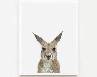 Baby Animal Nursery Art Print. Baby Kangaroo Little Darling. Animal Wall Art. Animal Nursery Decor. Baby Animal Photo.
