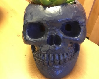 Midnight skull planter