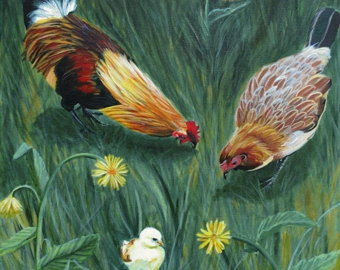 Chicken art print,  8x10  print, rooster art, chicken art, chicken art prints, farmhouse art, farm art, baby chicks, kauai roosters, kitchen