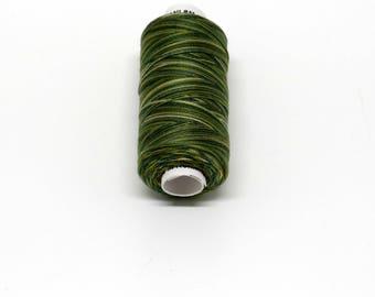 Valdani 60wt. Variegated Cotton Thread - #M19 Olives