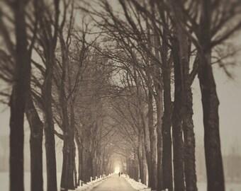 Fog Photo, Landscape, Black and White, Trees, Path, Road, Winter, Large Art Print, Enchanted, Fairytale, Monochromatic, Nature Photography